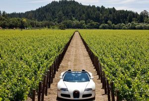 Featured in Napa Valley California